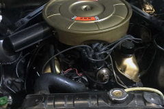 Ford-Mustang-V8-1965-Motor-2